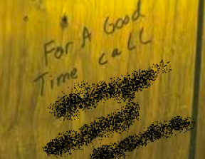 """""""For a good time call""""<br />photo credit: extremeskins.com"""